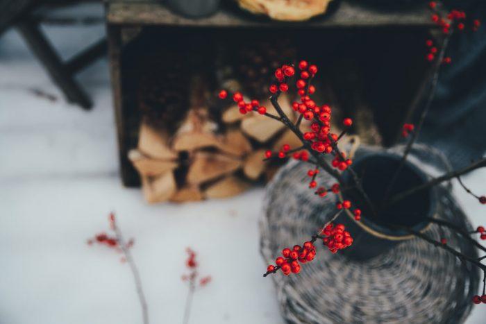 Ziema kurss iesvētes mācībai Vecpiebalgas draudzē